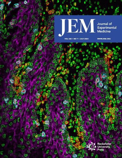 JEM Cover