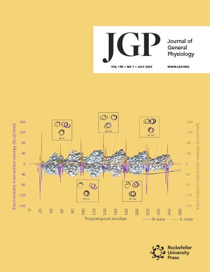 JGP Cover